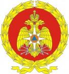 получение лицензии мчс в Санкт-Петербурге
